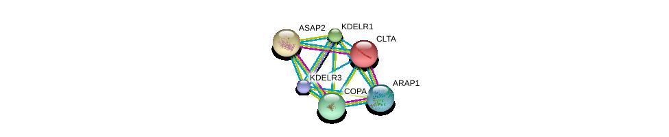 http://string-db.org/version_10/api/image/networkList?limit=0&targetmode=proteins&caller_identity=gene_cards&network_flavor=evidence&identifiers=9606.ENSP00000329471%0d%0a9606.ENSP00000281419%0d%0a9606.ENSP00000242285%0d%0a9606.ENSP00000377233%0d%0a9606.ENSP00000357048%0d%0a9606.ENSP00000386918%0d%0a