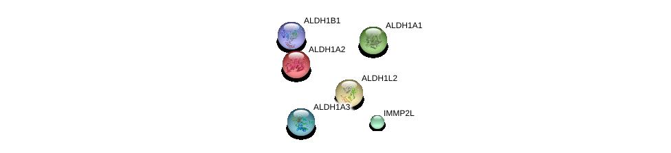 http://string-db.org/version_10/api/image/networkList?limit=0&targetmode=proteins&caller_identity=gene_cards&network_flavor=evidence&identifiers=9606.ENSP00000329553%0d%0a9606.ENSP00000258494%0d%0a9606.ENSP00000366927%0d%0a9606.ENSP00000332256%0d%0a9606.ENSP00000249750%0d%0a9606.ENSP00000297785%0d%0a