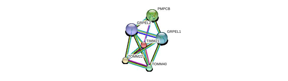 http://string-db.org/version_10/api/image/networkList?limit=0&targetmode=proteins&caller_identity=gene_cards&network_flavor=evidence&identifiers=9606.ENSP00000329558%0d%0a9606.ENSP00000169551%0d%0a9606.ENSP00000216034%0d%0a9606.ENSP00000249269%0d%0a9606.ENSP00000252487%0d%0a9606.ENSP00000264954%0d%0a