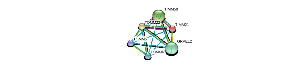 http://string-db.org/version_10/api/image/networkList?limit=0&targetmode=proteins&caller_identity=gene_cards&network_flavor=evidence&identifiers=9606.ENSP00000329558%0d%0a9606.ENSP00000381856%0d%0a9606.ENSP00000216034%0d%0a9606.ENSP00000438204%0d%0a9606.ENSP00000169551%0d%0a9606.ENSP00000318115%0d%0a
