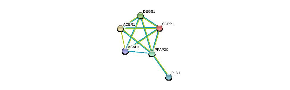 http://string-db.org/version_10/api/image/networkList?limit=0&targetmode=proteins&caller_identity=gene_cards&network_flavor=evidence&identifiers=9606.ENSP00000329697%0d%0a9606.ENSP00000316476%0d%0a9606.ENSP00000371152%0d%0a9606.ENSP00000301452%0d%0a9606.ENSP00000342793%0d%0a9606.ENSP00000247225%0d%0a