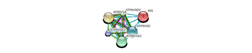 http://string-db.org/version_10/api/image/networkList?limit=0&targetmode=proteins&caller_identity=gene_cards&network_flavor=evidence&identifiers=9606.ENSP00000329757%0d%0a9606.ENSP00000273398%0d%0a9606.ENSP00000250971%0d%0a9606.ENSP00000411672%0d%0a9606.ENSP00000304891%0d%0a9606.ENSP00000285393%0d%0a