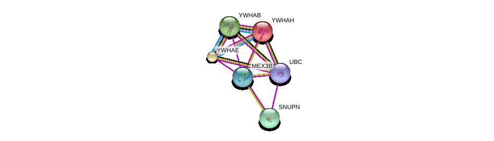 http://string-db.org/version_10/api/image/networkList?limit=0&targetmode=proteins&caller_identity=gene_cards&network_flavor=evidence&identifiers=9606.ENSP00000329918%0d%0a9606.ENSP00000344818%0d%0a9606.ENSP00000309831%0d%0a9606.ENSP00000248975%0d%0a9606.ENSP00000264335%0d%0a9606.ENSP00000300161%0d%0a