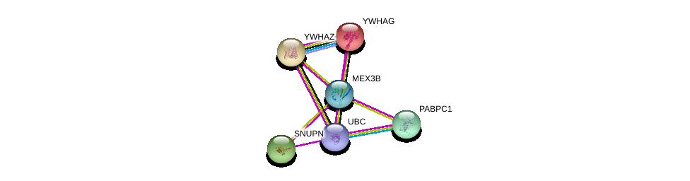 http://string-db.org/version_10/api/image/networkList?limit=0&targetmode=proteins&caller_identity=gene_cards&network_flavor=evidence&identifiers=9606.ENSP00000329918%0d%0a9606.ENSP00000344818%0d%0a9606.ENSP00000309831%0d%0a9606.ENSP00000313007%0d%0a9606.ENSP00000309503%0d%0a9606.ENSP00000306330%0d%0a