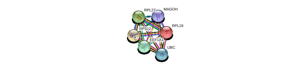 http://string-db.org/version_10/api/image/networkList?limit=0&targetmode=proteins&caller_identity=gene_cards&network_flavor=evidence&identifiers=9606.ENSP00000330054%0d%0a9606.ENSP00000344818%0d%0a9606.ENSP00000360525%0d%0a9606.ENSP00000225430%0d%0a9606.ENSP00000253788%0d%0a9606.ENSP00000230050%0d%0a