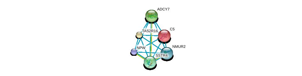 http://string-db.org/version_10/api/image/networkList?limit=0&targetmode=proteins&caller_identity=gene_cards&network_flavor=evidence&identifiers=9606.ENSP00000330070%0d%0a9606.ENSP00000223642%0d%0a9606.ENSP00000249284%0d%0a9606.ENSP00000254235%0d%0a9606.ENSP00000255008%0d%0a9606.ENSP00000255262%0d%0a