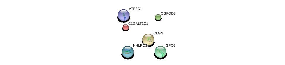 http://string-db.org/version_10/api/image/networkList?limit=0&targetmode=proteins&caller_identity=gene_cards&network_flavor=evidence&identifiers=9606.ENSP00000330075%0d%0a9606.ENSP00000376914%0d%0a9606.ENSP00000326699%0d%0a9606.ENSP00000368920%0d%0a9606.ENSP00000366246%0d%0a9606.ENSP00000304364%0d%0a