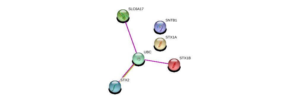 http://string-db.org/version_10/api/image/networkList?limit=0&targetmode=proteins&caller_identity=gene_cards&network_flavor=evidence&identifiers=9606.ENSP00000330199%0d%0a9606.ENSP00000344818%0d%0a9606.ENSP00000378965%0d%0a9606.ENSP00000222812%0d%0a9606.ENSP00000215095%0d%0a9606.ENSP00000376178%0d%0a