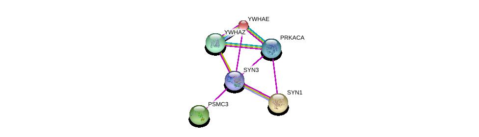 http://string-db.org/version_10/api/image/networkList?limit=0&targetmode=proteins&caller_identity=gene_cards&network_flavor=evidence&identifiers=9606.ENSP00000330219%0d%0a9606.ENSP00000264335%0d%0a9606.ENSP00000295987%0d%0a9606.ENSP00000298852%0d%0a9606.ENSP00000309503%0d%0a9606.ENSP00000309591%0d%0a