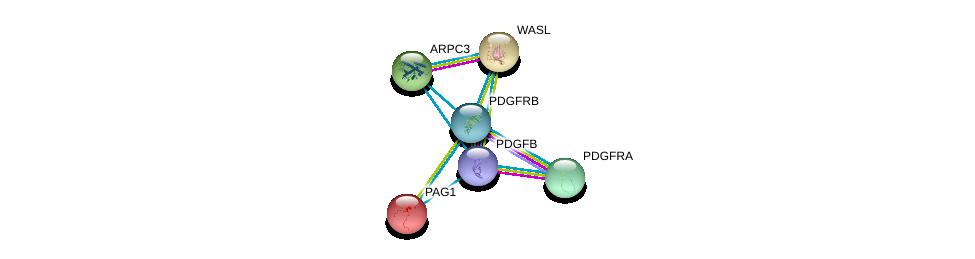 http://string-db.org/version_10/api/image/networkList?limit=0&targetmode=proteins&caller_identity=gene_cards&network_flavor=evidence&identifiers=9606.ENSP00000330382%0d%0a9606.ENSP00000261799%0d%0a9606.ENSP00000257290%0d%0a9606.ENSP00000220597%0d%0a9606.ENSP00000223023%0d%0a9606.ENSP00000228825%0d%0a