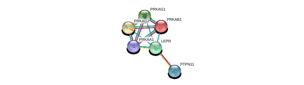 http://string-db.org/version_10/api/image/networkList?limit=0&targetmode=proteins&caller_identity=gene_cards&network_flavor=evidence&identifiers=9606.ENSP00000330393%0d%0a9606.ENSP00000340944%0d%0a9606.ENSP00000229328%0d%0a9606.ENSP00000287878%0d%0a9606.ENSP00000323867%0d%0a9606.ENSP00000346148%0d%0a