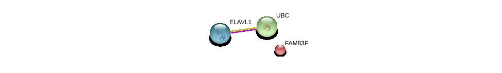 http://string-db.org/version_10/api/image/networkList?limit=0&targetmode=proteins&caller_identity=gene_cards&network_flavor=evidence&identifiers=9606.ENSP00000330432%0d%0a9606.ENSP00000385269%0d%0a9606.ENSP00000344818%0d%0a