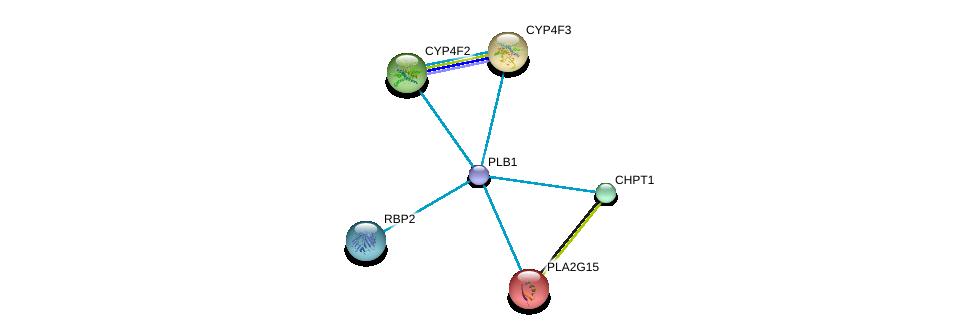 http://string-db.org/version_10/api/image/networkList?limit=0&targetmode=proteins&caller_identity=gene_cards&network_flavor=evidence&identifiers=9606.ENSP00000330442%0d%0a9606.ENSP00000219345%0d%0a9606.ENSP00000221307%0d%0a9606.ENSP00000221700%0d%0a9606.ENSP00000229266%0d%0a9606.ENSP00000232217%0d%0a