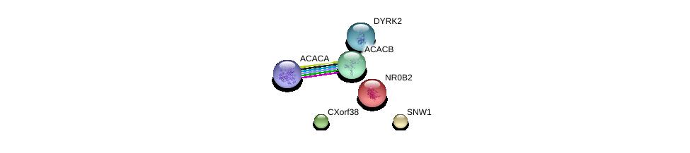 http://string-db.org/version_10/api/image/networkList?limit=0&targetmode=proteins&caller_identity=gene_cards&network_flavor=evidence&identifiers=9606.ENSP00000330488%0d%0a9606.ENSP00000341044%0d%0a9606.ENSP00000344789%0d%0a9606.ENSP00000254227%0d%0a9606.ENSP00000261531%0d%0a9606.ENSP00000342105%0d%0a