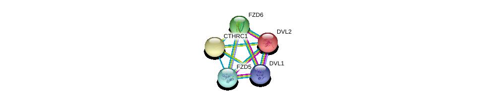 http://string-db.org/version_10/api/image/networkList?limit=0&targetmode=proteins&caller_identity=gene_cards&network_flavor=evidence&identifiers=9606.ENSP00000330523%0d%0a9606.ENSP00000368169%0d%0a9606.ENSP00000368169%0d%0a9606.ENSP00000005340%0d%0a9606.ENSP00000354607%0d%0a9606.ENSP00000351605%0d%0a