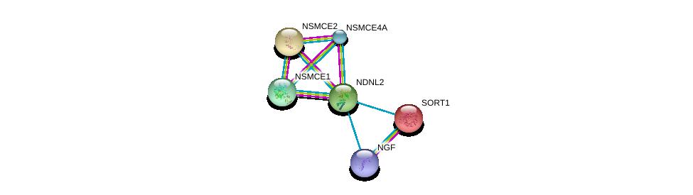 http://string-db.org/version_10/api/image/networkList?limit=0&targetmode=proteins&caller_identity=gene_cards&network_flavor=evidence&identifiers=9606.ENSP00000330694%0d%0a9606.ENSP00000355077%0d%0a9606.ENSP00000256637%0d%0a9606.ENSP00000358525%0d%0a9606.ENSP00000358019%0d%0a9606.ENSP00000287437%0d%0a