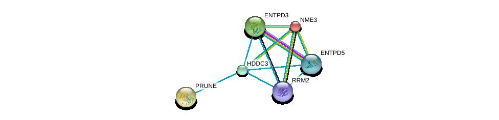http://string-db.org/version_10/api/image/networkList?limit=0&targetmode=proteins&caller_identity=gene_cards&network_flavor=evidence&identifiers=9606.ENSP00000330721%0d%0a9606.ENSP00000301825%0d%0a9606.ENSP00000335246%0d%0a9606.ENSP00000219302%0d%0a9606.ENSP00000271620%0d%0a9606.ENSP00000353770%0d%0a
