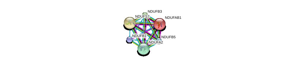 http://string-db.org/version_10/api/image/networkList?limit=0&targetmode=proteins&caller_identity=gene_cards&network_flavor=evidence&identifiers=9606.ENSP00000330787%0d%0a9606.ENSP00000007516%0d%0a9606.ENSP00000233627%0d%0a9606.ENSP00000237889%0d%0a9606.ENSP00000252102%0d%0a9606.ENSP00000259037%0d%0a