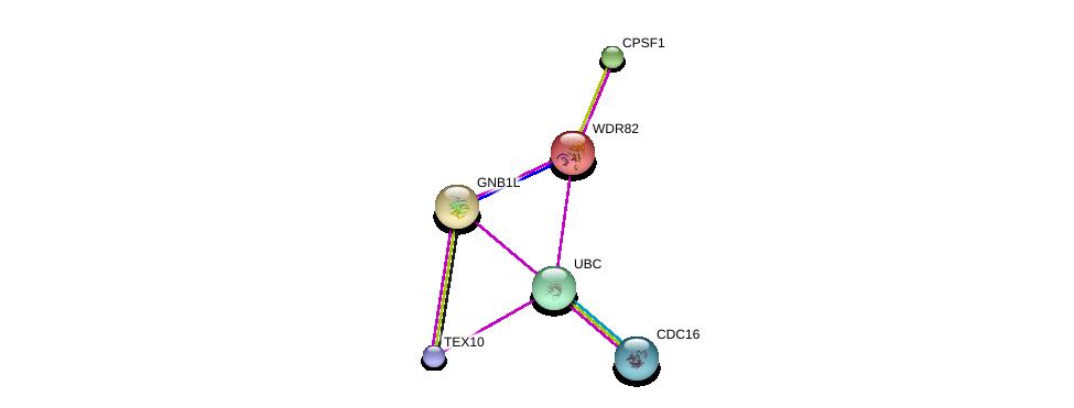 http://string-db.org/version_10/api/image/networkList?limit=0&targetmode=proteins&caller_identity=gene_cards&network_flavor=evidence&identifiers=9606.ENSP00000331313%0d%0a9606.ENSP00000344818%0d%0a9606.ENSP00000296490%0d%0a9606.ENSP00000364037%0d%0a9606.ENSP00000339353%0d%0a9606.ENSP00000348554%0d%0a