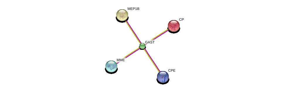 http://string-db.org/version_10/api/image/networkList?limit=0&targetmode=proteins&caller_identity=gene_cards&network_flavor=evidence&identifiers=9606.ENSP00000331358%0d%0a9606.ENSP00000353679%0d%0a9606.ENSP00000264613%0d%0a9606.ENSP00000386104%0d%0a9606.ENSP00000269202%0d%0a