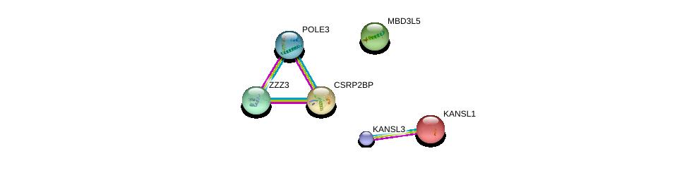 http://string-db.org/version_10/api/image/networkList?limit=0&targetmode=proteins&caller_identity=gene_cards&network_flavor=evidence&identifiers=9606.ENSP00000331435%0d%0a9606.ENSP00000262419%0d%0a9606.ENSP00000359837%0d%0a9606.ENSP00000396749%0d%0a9606.ENSP00000363284%0d%0a9606.ENSP00000278816%0d%0a