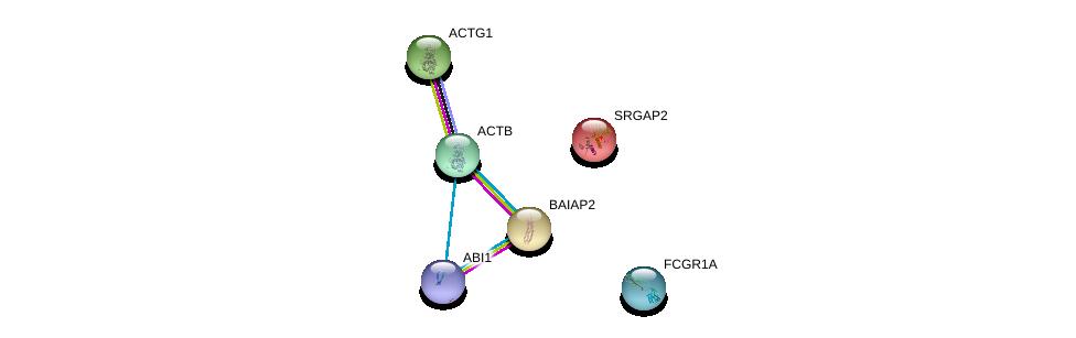 http://string-db.org/version_10/api/image/networkList?limit=0&targetmode=proteins&caller_identity=gene_cards&network_flavor=evidence&identifiers=9606.ENSP00000331514%0d%0a9606.ENSP00000349960%0d%0a9606.ENSP00000365312%0d%0a9606.ENSP00000295713%0d%0a9606.ENSP00000316338%0d%0a9606.ENSP00000358165%0d%0a