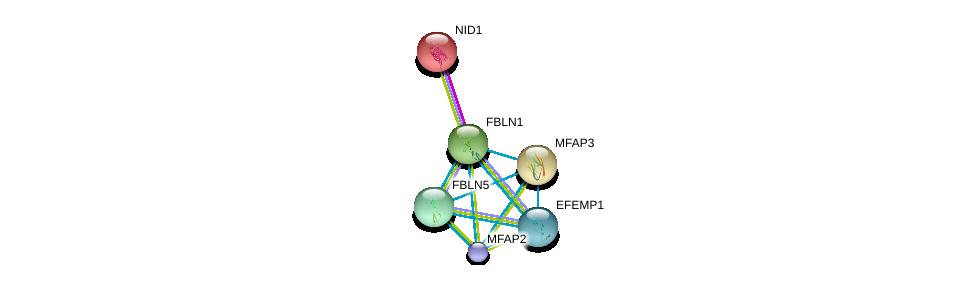 http://string-db.org/version_10/api/image/networkList?limit=0&targetmode=proteins&caller_identity=gene_cards&network_flavor=evidence&identifiers=9606.ENSP00000331544%0d%0a9606.ENSP00000264187%0d%0a9606.ENSP00000322956%0d%0a9606.ENSP00000347596%0d%0a9606.ENSP00000345008%0d%0a9606.ENSP00000364685%0d%0a