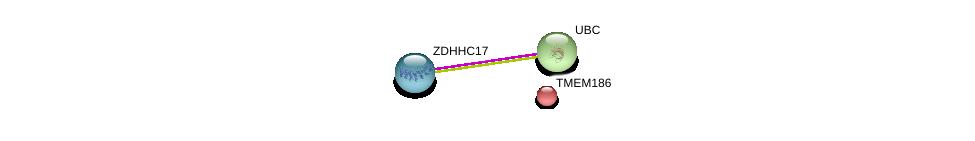 http://string-db.org/version_10/api/image/networkList?limit=0&targetmode=proteins&caller_identity=gene_cards&network_flavor=evidence&identifiers=9606.ENSP00000331640%0d%0a9606.ENSP00000403397%0d%0a9606.ENSP00000344818%0d%0a