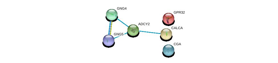 http://string-db.org/version_10/api/image/networkList?limit=0&targetmode=proteins&caller_identity=gene_cards&network_flavor=evidence&identifiers=9606.ENSP00000331746%0d%0a9606.ENSP00000358595%0d%0a9606.ENSP00000342952%0d%0a9606.ENSP00000270590%0d%0a9606.ENSP00000359675%0d%0a9606.ENSP00000355556%0d%0a