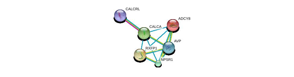 http://string-db.org/version_10/api/image/networkList?limit=0&targetmode=proteins&caller_identity=gene_cards&network_flavor=evidence&identifiers=9606.ENSP00000331746%0d%0a9606.ENSP00000376177%0d%0a9606.ENSP00000369647%0d%0a9606.ENSP00000352839%0d%0a9606.ENSP00000303248%0d%0a9606.ENSP00000286355%0d%0a