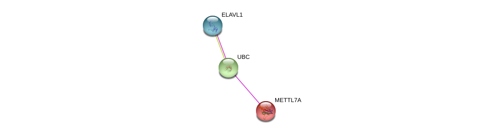 http://string-db.org/version_10/api/image/networkList?limit=0&targetmode=proteins&caller_identity=gene_cards&network_flavor=evidence&identifiers=9606.ENSP00000331787%0d%0a9606.ENSP00000344818%0d%0a9606.ENSP00000385269%0d%0a