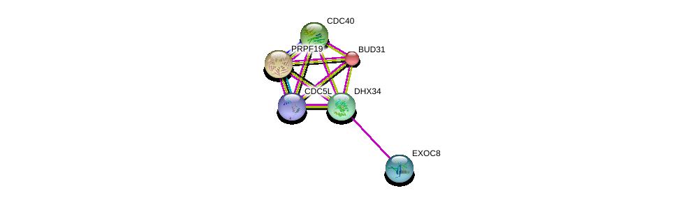 http://string-db.org/version_10/api/image/networkList?limit=0&targetmode=proteins&caller_identity=gene_cards&network_flavor=evidence&identifiers=9606.ENSP00000331907%0d%0a9606.ENSP00000360532%0d%0a9606.ENSP00000222969%0d%0a9606.ENSP00000304370%0d%0a9606.ENSP00000227524%0d%0a9606.ENSP00000353564%0d%0a