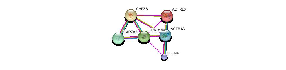 http://string-db.org/version_10/api/image/networkList?limit=0&targetmode=proteins&caller_identity=gene_cards&network_flavor=evidence&identifiers=9606.ENSP00000331983%0d%0a9606.ENSP00000414906%0d%0a9606.ENSP00000254286%0d%0a9606.ENSP00000264202%0d%0a9606.ENSP00000354947%0d%0a9606.ENSP00000358921%0d%0a
