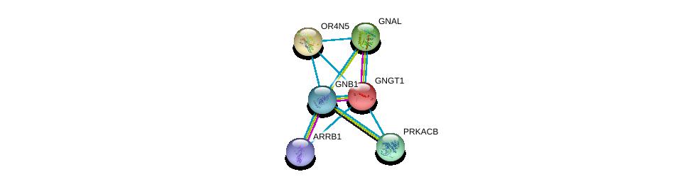 http://string-db.org/version_10/api/image/networkList?limit=0&targetmode=proteins&caller_identity=gene_cards&network_flavor=evidence&identifiers=9606.ENSP00000332110%0d%0a9606.ENSP00000334051%0d%0a9606.ENSP00000367869%0d%0a9606.ENSP00000248572%0d%0a9606.ENSP00000359719%0d%0a9606.ENSP00000409581%0d%0a