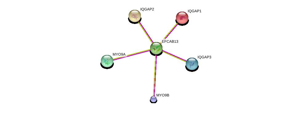 http://string-db.org/version_10/api/image/networkList?limit=0&targetmode=proteins&caller_identity=gene_cards&network_flavor=evidence&identifiers=9606.ENSP00000332111%0d%0a9606.ENSP00000348349%0d%0a9606.ENSP00000380444%0d%0a9606.ENSP00000268182%0d%0a9606.ENSP00000274364%0d%0a9606.ENSP00000354451%0d%0a