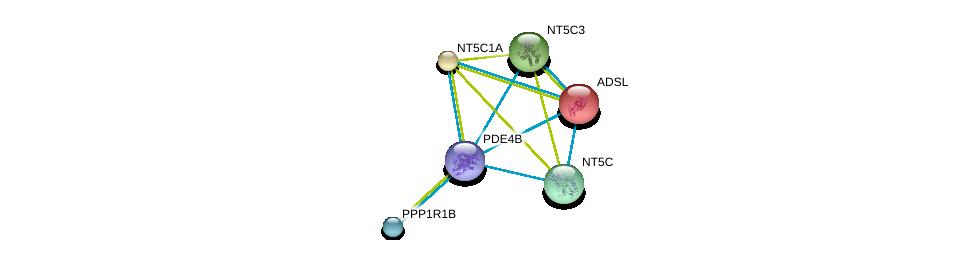 http://string-db.org/version_10/api/image/networkList?limit=0&targetmode=proteins&caller_identity=gene_cards&network_flavor=evidence&identifiers=9606.ENSP00000332116%0d%0a9606.ENSP00000216194%0d%0a9606.ENSP00000235628%0d%0a9606.ENSP00000242210%0d%0a9606.ENSP00000245552%0d%0a9606.ENSP00000254079%0d%0a