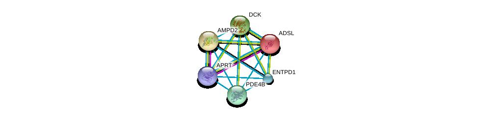 http://string-db.org/version_10/api/image/networkList?limit=0&targetmode=proteins&caller_identity=gene_cards&network_flavor=evidence&identifiers=9606.ENSP00000332116%0d%0a9606.ENSP00000360250%0d%0a9606.ENSP00000367615%0d%0a9606.ENSP00000216194%0d%0a9606.ENSP00000286648%0d%0a9606.ENSP00000256578%0d%0a