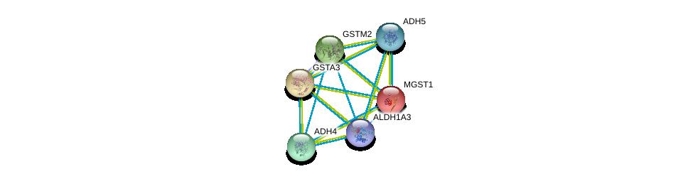http://string-db.org/version_10/api/image/networkList?limit=0&targetmode=proteins&caller_identity=gene_cards&network_flavor=evidence&identifiers=9606.ENSP00000332256%0d%0a9606.ENSP00000265512%0d%0a9606.ENSP00000296412%0d%0a9606.ENSP00000010404%0d%0a9606.ENSP00000211122%0d%0a9606.ENSP00000241337%0d%0a