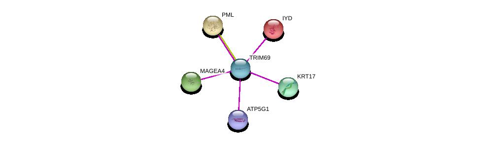 http://string-db.org/version_10/api/image/networkList?limit=0&targetmode=proteins&caller_identity=gene_cards&network_flavor=evidence&identifiers=9606.ENSP00000332284%0d%0a9606.ENSP00000276344%0d%0a9606.ENSP00000268058%0d%0a9606.ENSP00000348205%0d%0a9606.ENSP00000308452%0d%0a9606.ENSP00000229447%0d%0a