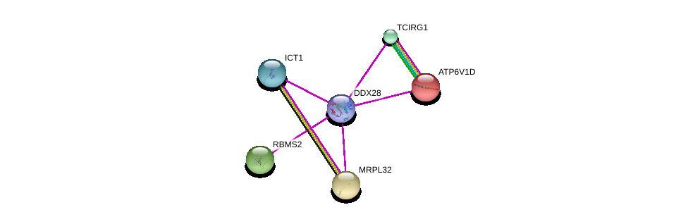 http://string-db.org/version_10/api/image/networkList?limit=0&targetmode=proteins&caller_identity=gene_cards&network_flavor=evidence&identifiers=9606.ENSP00000332340%0d%0a9606.ENSP00000223324%0d%0a9606.ENSP00000301585%0d%0a9606.ENSP00000216442%0d%0a9606.ENSP00000262031%0d%0a9606.ENSP00000265686%0d%0a
