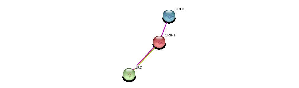 http://string-db.org/version_10/api/image/networkList?limit=0&targetmode=proteins&caller_identity=gene_cards&network_flavor=evidence&identifiers=9606.ENSP00000332449%0d%0a9606.ENSP00000378890%0d%0a9606.ENSP00000344818%0d%0a
