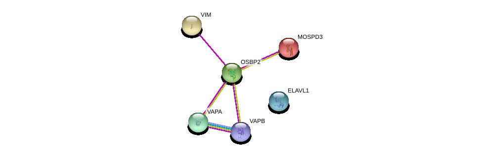 http://string-db.org/version_10/api/image/networkList?limit=0&targetmode=proteins&caller_identity=gene_cards&network_flavor=evidence&identifiers=9606.ENSP00000332576%0d%0a9606.ENSP00000417175%0d%0a9606.ENSP00000224237%0d%0a9606.ENSP00000223054%0d%0a9606.ENSP00000345656%0d%0a9606.ENSP00000385269%0d%0a