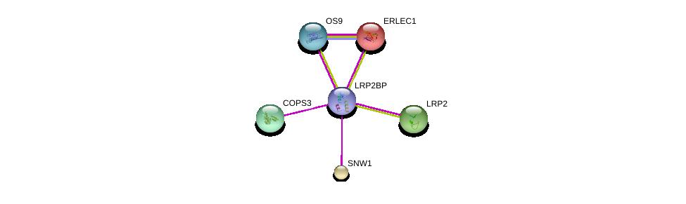http://string-db.org/version_10/api/image/networkList?limit=0&targetmode=proteins&caller_identity=gene_cards&network_flavor=evidence&identifiers=9606.ENSP00000332681%0d%0a9606.ENSP00000318165%0d%0a9606.ENSP00000185150%0d%0a9606.ENSP00000261531%0d%0a9606.ENSP00000263816%0d%0a9606.ENSP00000268717%0d%0a