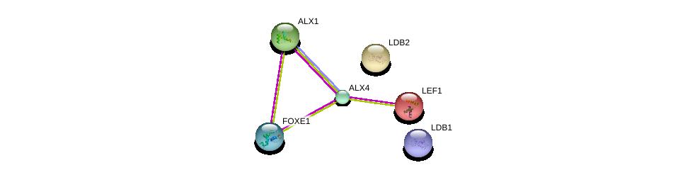 http://string-db.org/version_10/api/image/networkList?limit=0&targetmode=proteins&caller_identity=gene_cards&network_flavor=evidence&identifiers=9606.ENSP00000332744%0d%0a9606.ENSP00000306772%0d%0a9606.ENSP00000392466%0d%0a9606.ENSP00000265165%0d%0a9606.ENSP00000364265%0d%0a9606.ENSP00000315417%0d%0a