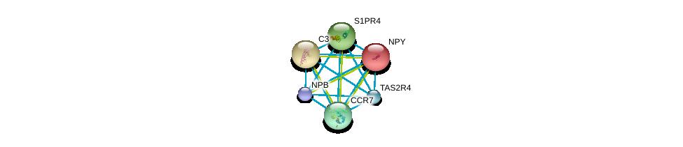 http://string-db.org/version_10/api/image/networkList?limit=0&targetmode=proteins&caller_identity=gene_cards&network_flavor=evidence&identifiers=9606.ENSP00000332766%0d%0a9606.ENSP00000242152%0d%0a9606.ENSP00000245907%0d%0a9606.ENSP00000246115%0d%0a9606.ENSP00000246657%0d%0a9606.ENSP00000247881%0d%0a
