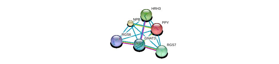 http://string-db.org/version_10/api/image/networkList?limit=0&targetmode=proteins&caller_identity=gene_cards&network_flavor=evidence&identifiers=9606.ENSP00000332766%0d%0a9606.ENSP00000355523%0d%0a9606.ENSP00000451030%0d%0a9606.ENSP00000342560%0d%0a9606.ENSP00000381339%0d%0a9606.ENSP00000225992%0d%0a