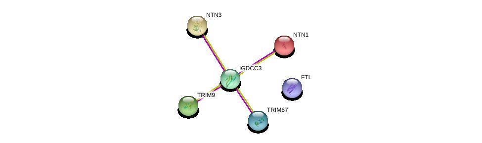 http://string-db.org/version_10/api/image/networkList?limit=0&targetmode=proteins&caller_identity=gene_cards&network_flavor=evidence&identifiers=9606.ENSP00000332773%0d%0a9606.ENSP00000355613%0d%0a9606.ENSP00000298355%0d%0a9606.ENSP00000173229%0d%0a9606.ENSP00000293973%0d%0a9606.ENSP00000366525%0d%0a