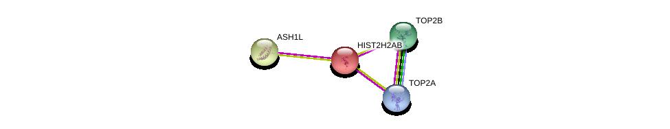 http://string-db.org/version_10/api/image/networkList?limit=0&targetmode=proteins&caller_identity=gene_cards&network_flavor=evidence&identifiers=9606.ENSP00000332790%0d%0a9606.ENSP00000411532%0d%0a9606.ENSP00000396704%0d%0a9606.ENSP00000396704%0d%0a9606.ENSP00000376204%0d%0a9606.ENSP00000376204%0d%0a