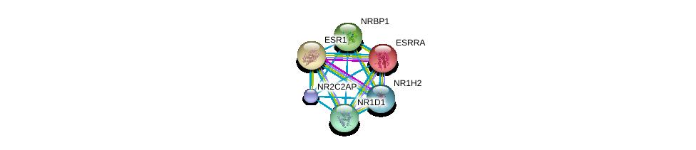 http://string-db.org/version_10/api/image/networkList?limit=0&targetmode=proteins&caller_identity=gene_cards&network_flavor=evidence&identifiers=9606.ENSP00000332823%0d%0a9606.ENSP00000000442%0d%0a9606.ENSP00000206249%0d%0a9606.ENSP00000233557%0d%0a9606.ENSP00000246672%0d%0a9606.ENSP00000253727%0d%0a