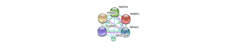 http://string-db.org/version_10/api/image/networkList?limit=0&targetmode=proteins&caller_identity=gene_cards&network_flavor=evidence&identifiers=9606.ENSP00000332823%0d%0a9606.ENSP00000287820%0d%0a9606.ENSP00000386171%0d%0a9606.ENSP00000233557%0d%0a9606.ENSP00000291442%0d%0a9606.ENSP00000353427%0d%0a
